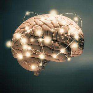 Beyin Tümöründe Beslenme